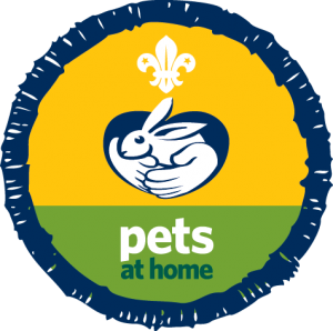 Animals for scouting groups beaver badge