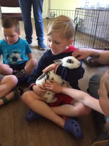 bunny with boys animal party