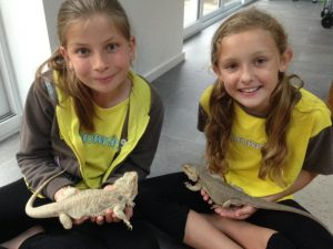 Animals for scouting groups visit to brownies