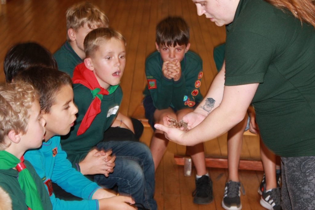 Animal Club animal schools visit South Yorkshire