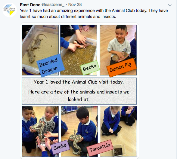 Children experience great variety of species in their school