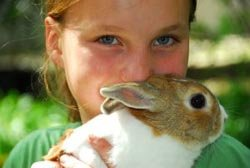 girl with a rabbit at an animal workshop